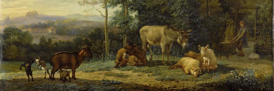 dipinto vari animali domestici
